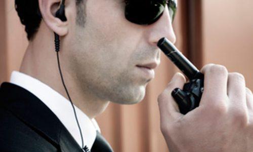 AP-security-agent-evenementiel-495x321